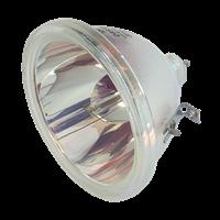 EIKI 610 284 4627 Lampe uten lampehus