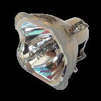 EIKI 610 343 2069 Lampe uten lampehus
