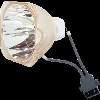 Lampe og lyspære EPSON ELPLP79 (V13H010L79) Beste pris